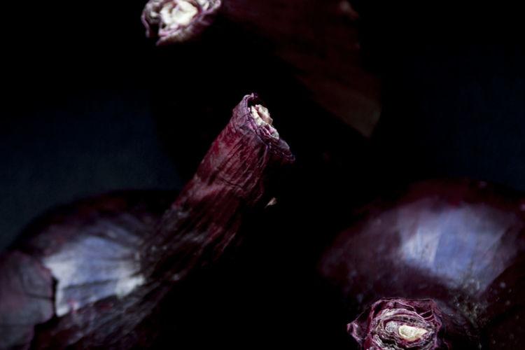 Czerwona cebula Art Food Foodphotography Jwaniowska Nature No People Onion Red