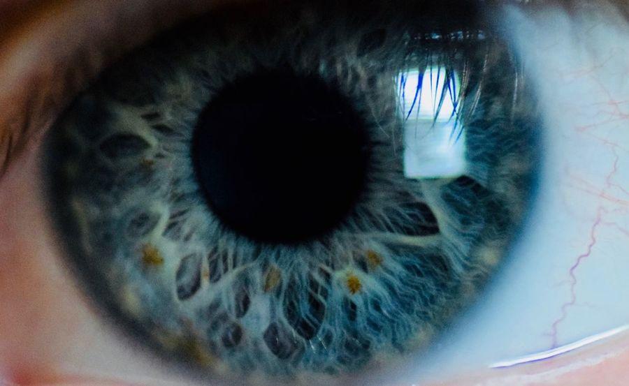 Human Eye Iris - Eye Close-up Eyeball Blue Eyes Macro Photography