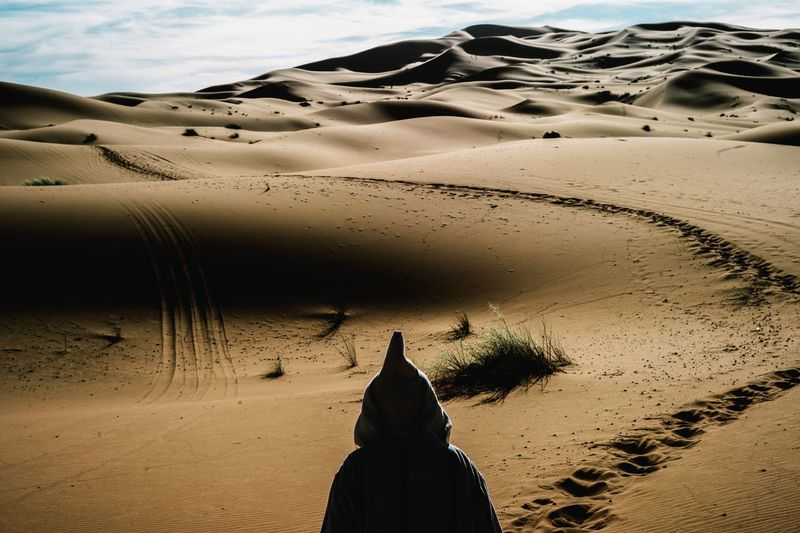 Rear view of person in desert against sky