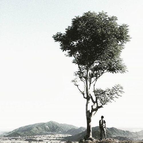 Pohon jomblo dan pria jomblo 😿 Bionjpffa VSCO Vscocam