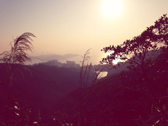 HongKong Thepeak Sunset