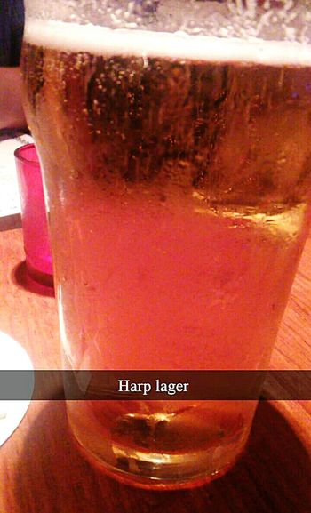 Red Lion harp lager at the red lion. Foods & Drinks Beer Lager Harp Lager