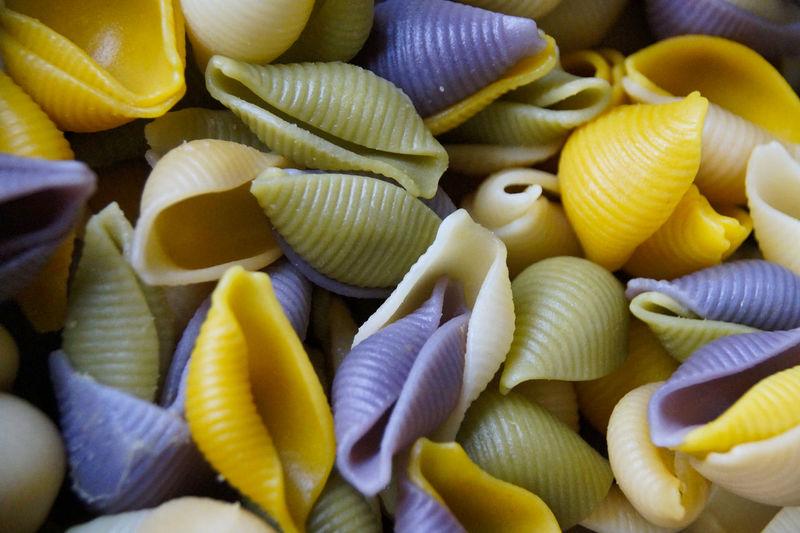 Full frame shot of multi colored conchiglie pasta