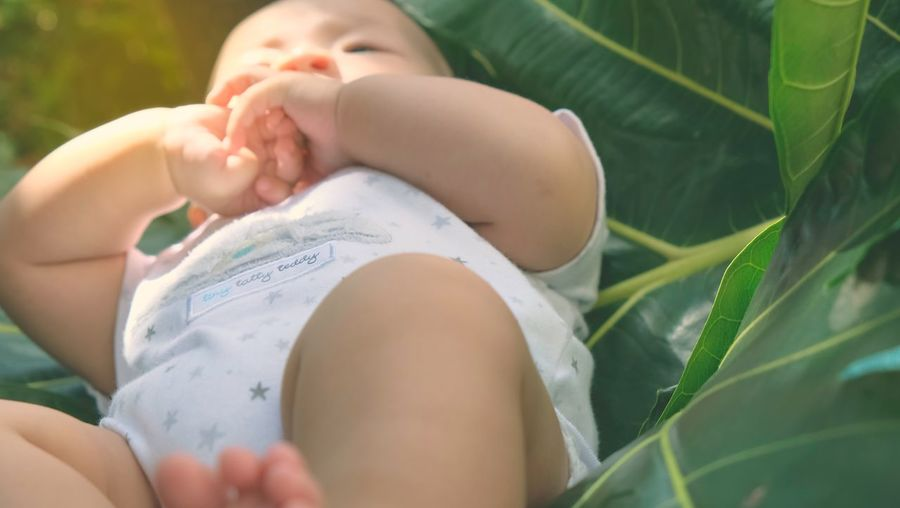 A jungle boy Leaf Baby Photography Outdoors Jungle Newborn Baby Kid Close-up Babies Only People Abdomen Adult