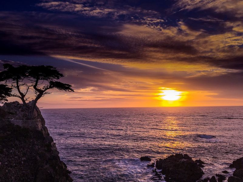 The Lone Cypress. Pebble Beach, CA. Sunset Sea Beauty In Nature Scenics Nature Horizon Over Water Cloud - Sky Sky Tranquility Idyllic No People Water Tranquil Scene Outdoors Beach Pebble Beach Romantic Sky California Coast Sunset