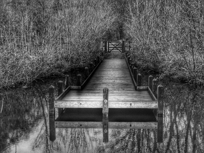 Taken at Etherow country park it was so peaceful the day I was here .There was no one else around Natural Photography Creative Light And Shadow Black And White Dark Photography Black & White B&w Photography Nature Black&white Creative Light And Shadow Shades Of Grey Black And White Photography Monocrome Monochrome Black And White Photography Eye4photography  Fujifilm Eyeem4photography Showcase: January EyeEm Masterclass Eyeem Photography Hdr_Collection HDR Water Reflections See The World Through My Eyes The World Through My Eyes The Great Outdoors With Adobe