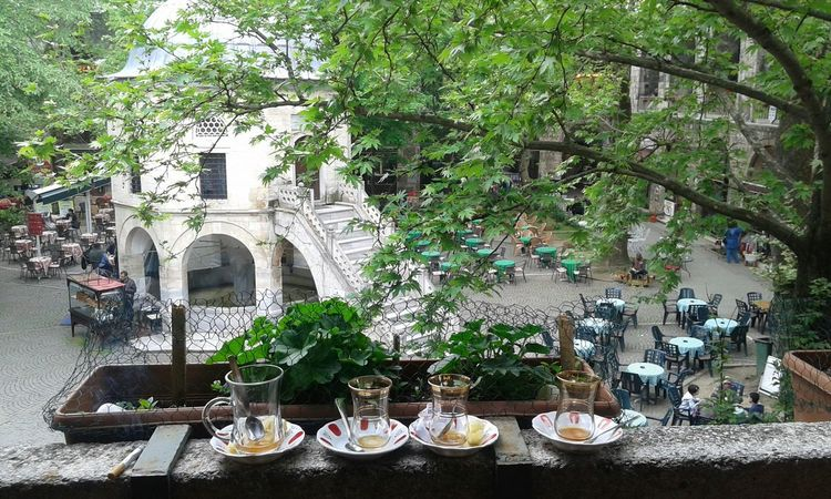 Bursa Ulucamii EyeEm Nature Lover Turkey Nuture