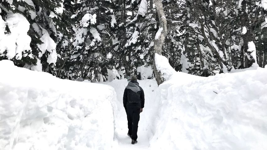into the wood Cold Wanderlust Travel Trail Walking Course Trekking Hiking Toyama Shinhotaka Hida Takayama Winter Monster Tree Japan Alps Snow Wall Snow Winter Cold Temperature One Man Only One Person Only Men Walking Rear View