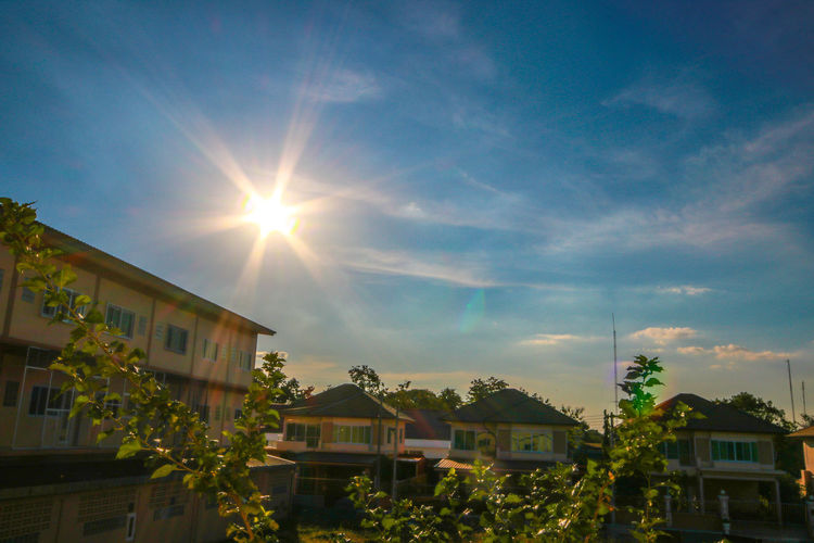 Sun Nature Lens