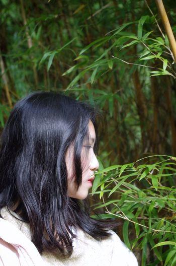 竹林 First Eyeem