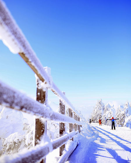 Snow Winter Cold Temperature Sky Sport Nature Day Scenics - Nature Beauty In Nature White Color Mountain Blue Leisure Activity Winter Sport Covering Land Clear Sky Unrecognizable Person Skiing Outdoors