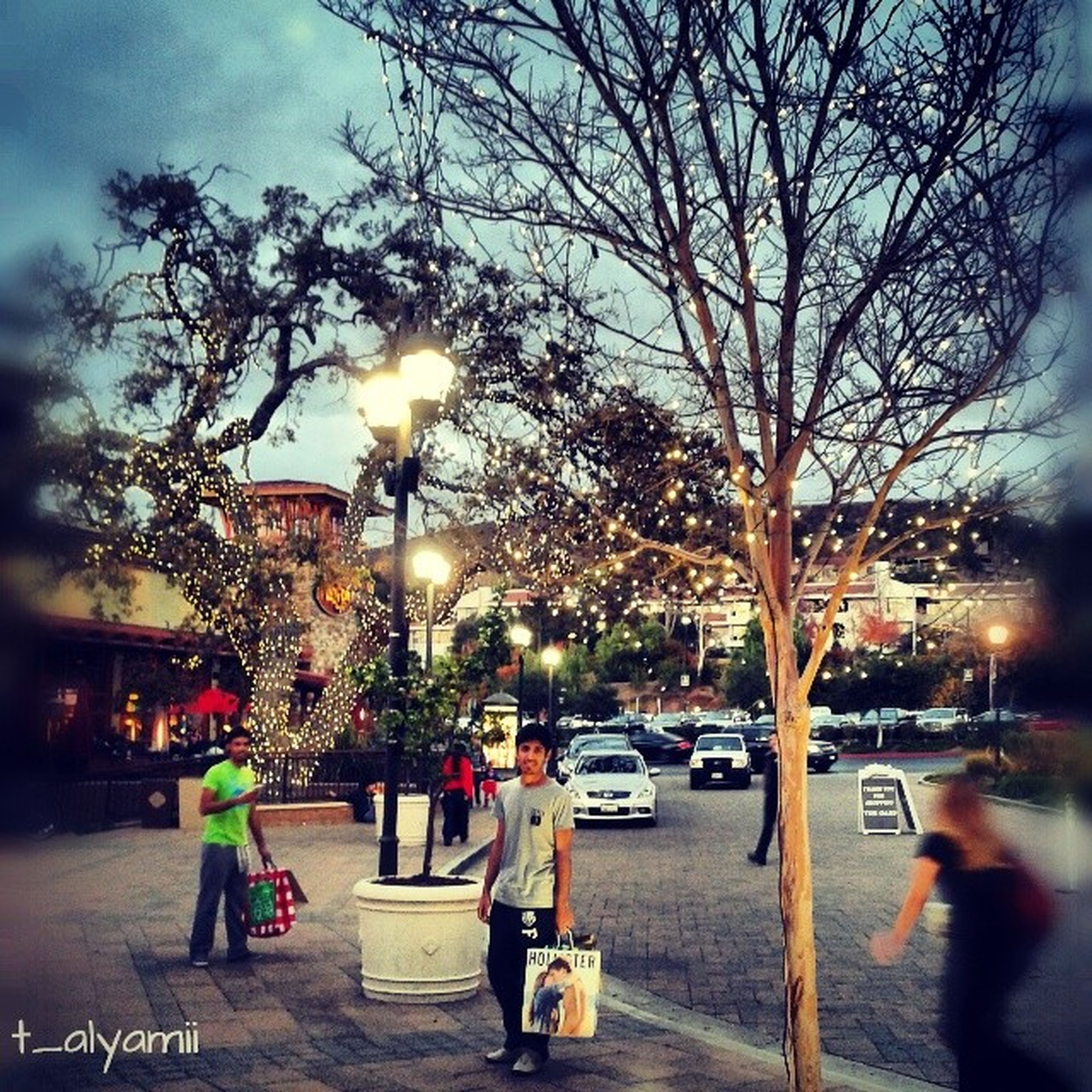 tree, illuminated, street light, street, men, city, lifestyles, lighting equipment, sky, city life, person, bare tree, leisure activity, branch, transportation, walking, night, building exterior, incidental people