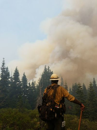 Rear View Of Firefighter Standing In Forest Against Smoke