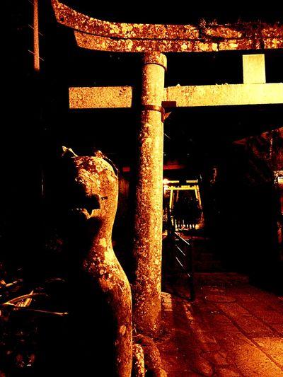 若宮稲荷神社 竹ん芸 Festival 狐 Fox Shrine Japanese Shrine In the Irabayashi of Nagasaki, was held at the Wakamiya Inari Shrine, I have seen Takengei.