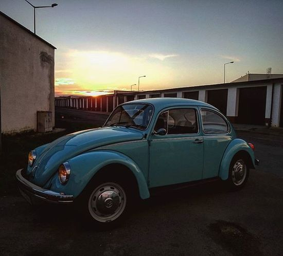 🚗 VW Garbus Bettle Kaffer Auto Niebieski Klasyk Zachod Classicvw Classiccar Sunset Vdub Blue Shiny Garage