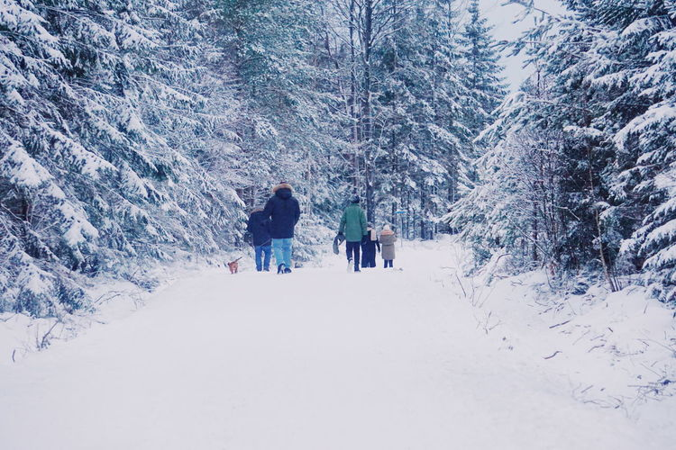 people and dogs walking in the snowcapped forest Family Snow Snow Covered Winter Adventure Lifestyles Snow Winter Full Length Cold Temperature Forest Outdoors Nature Beauty In Nature Ski Holiday Warm Clothing Vacations People Tree