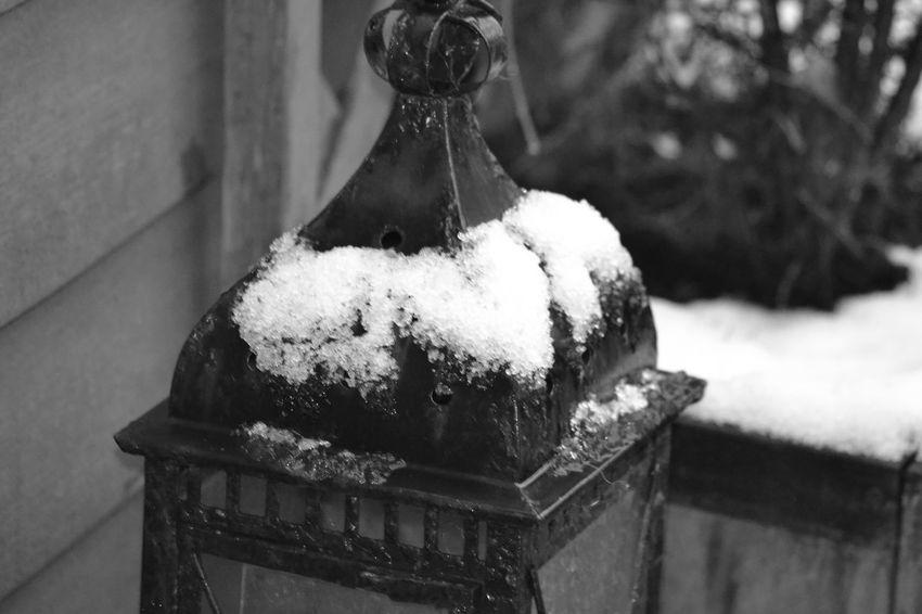 Snowy Days... Lantern Black & White MyBackGarden