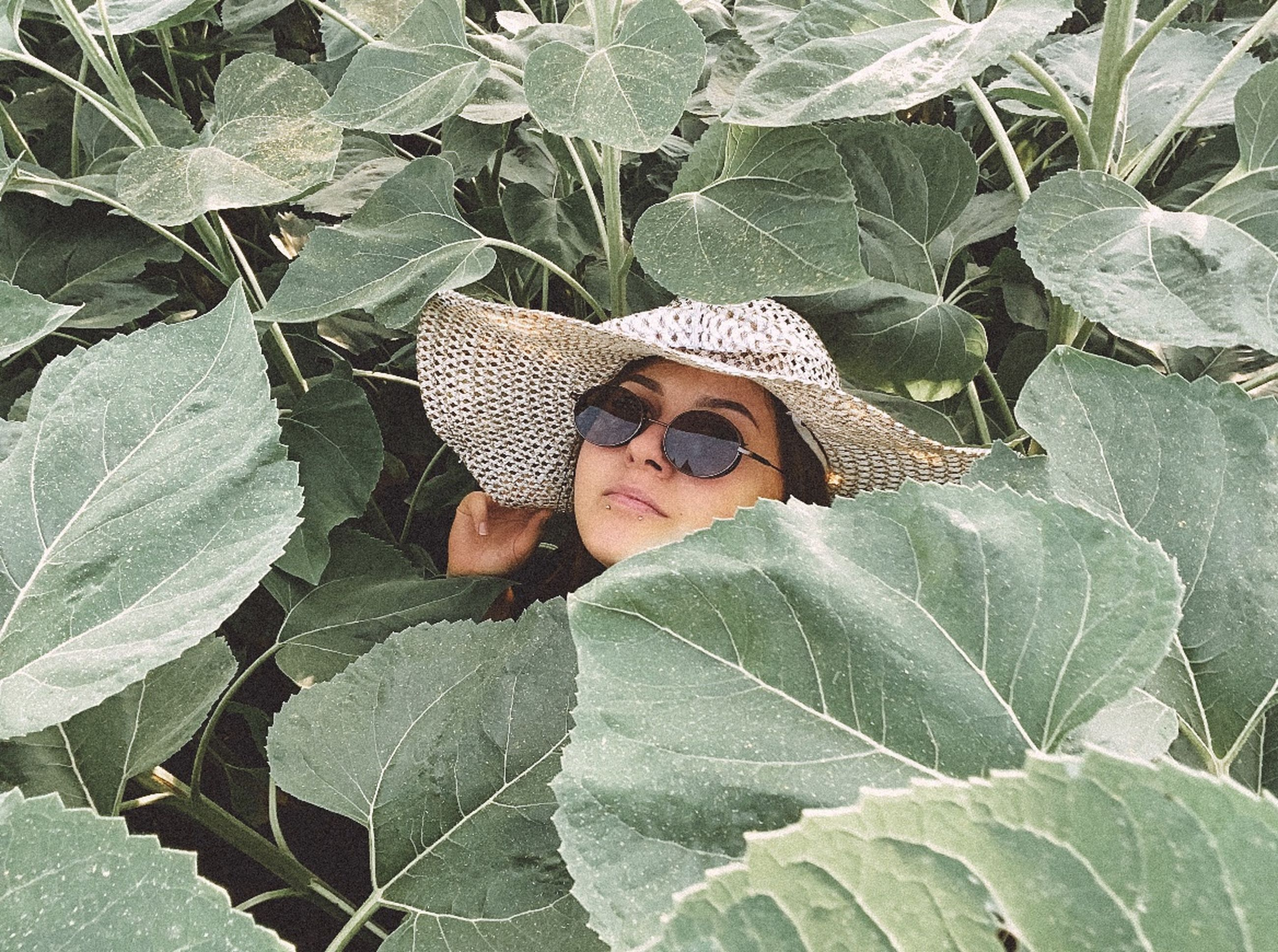 leaf, plant part, one person, nature, hat, plant, flower, portrait, green, sun hat, growth, adult, day, glasses, outdoors, cowboy hat, sunglasses, women, lifestyles, leisure activity, high angle view, young adult, front view, headshot, clothing, looking at camera, person, straw hat, beauty in nature, land, fashion accessory, produce