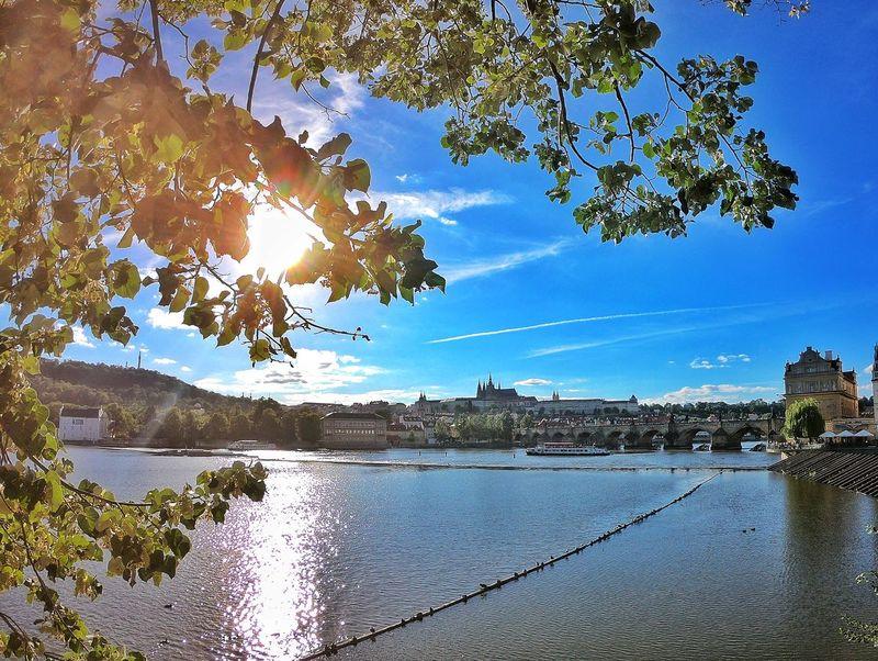 Prague Travel Trip Holiday Photooftheday Wonderful_prague Visitcz Visitczechrepublic Traveldeeper Topeuropephoto Gopro GoProhero6 Goprolife Archilovers Architecturelovers Tree Water Lake Reflection Sky