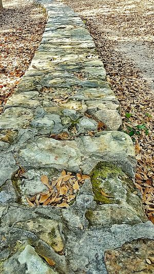 Stone Walkway Stone Stone Material Walkway Trees Shade Full Frame Nature Backgrounds High Angle View Textured  Outdoors Showing Detail Field Of Depth Natural Pattern Close-up Near To Far Near And Far Outdoor Photography Outside Beauty In Nature No People Tree Day