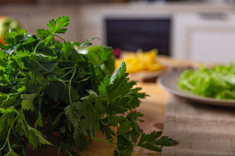 Close-up of green leaves on table