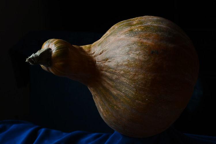 Black Background Close-up Day Food Freshness Healthy Eating Indoors  No People Pumpkin Studio Shot Vegetable Zucca
