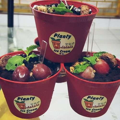 Planty Ice Cream.. 😍😋 Plantyicecream Icecream Medan Yummy loveforlove unique l4l chocolate planty free newicecream plantyicecream🍃 medanarea marshmellows commentforcomment withsunkist class delicious culinary followforfollow 💞 plantzicecream likeforlike dealmedan coffeebreak likeaplant foodporn loveit