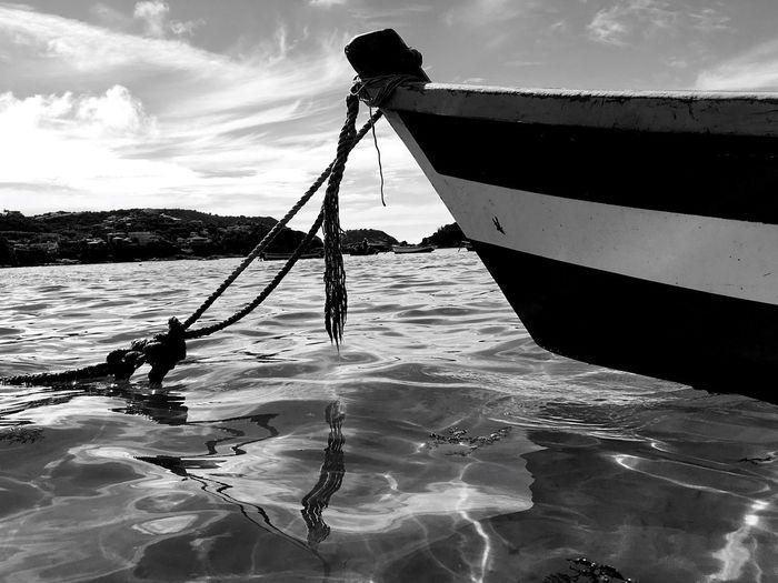 Rope Algae Hull Black & White EyeEmNewHere