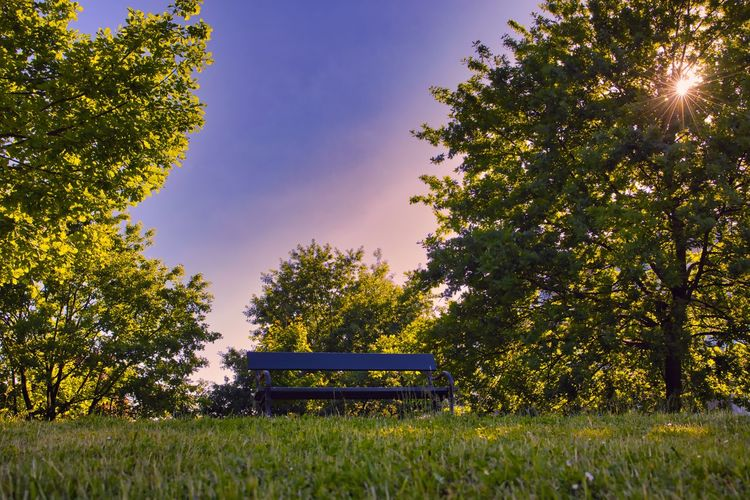 Park bench on field against sky