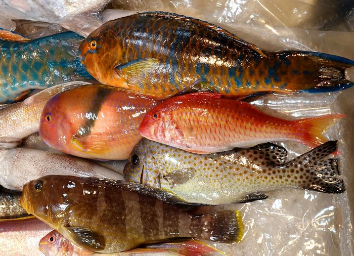 Full frame shot of fishes for sale at market stall