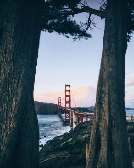 Golden Gate Bridge San Franciso The Architect - 2016 EyeEm Awards