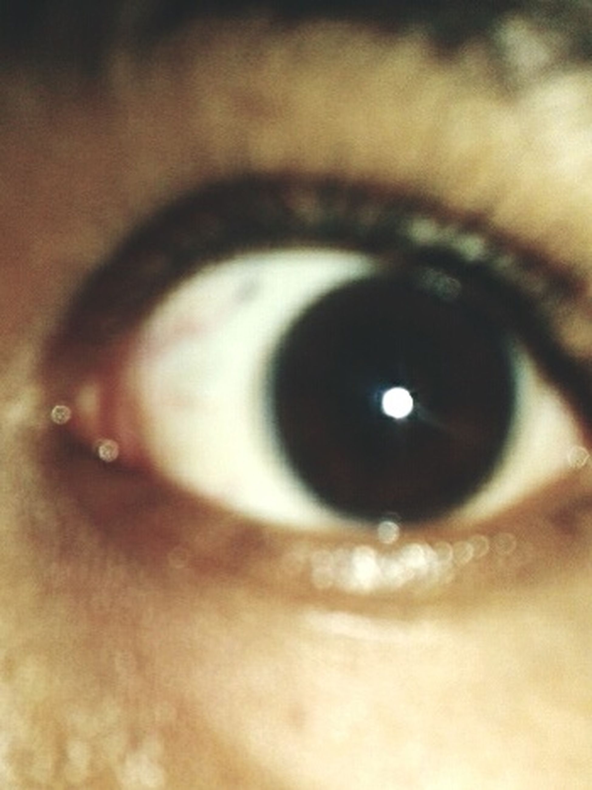close-up, human eye, indoors, eyelash, eyesight, extreme close-up, part of, sensory perception, circle, reflection, selective focus, extreme close up, unrecognizable person, iris - eye, human skin, detail, eyeball
