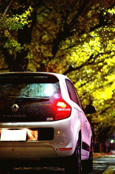 TWINGO Renault Car Transportation Tree Land Vehicle No People Nature Outdoors