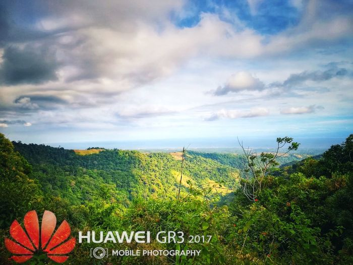 Mountains And Sky Jmphotography Huaweigr3'17 Flower Growth No People Beauty In Nature Outdoors Nature Plant Rural Scene