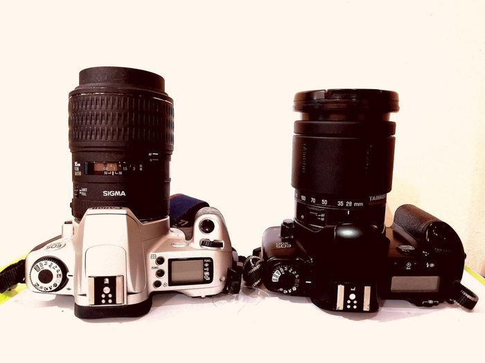 Siblings SLR Camera Film Filmcamera Hobbyphotography White Background Close-up