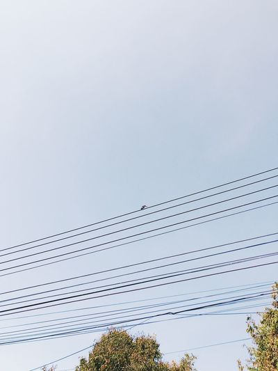 Low angle view of cables against clear sky