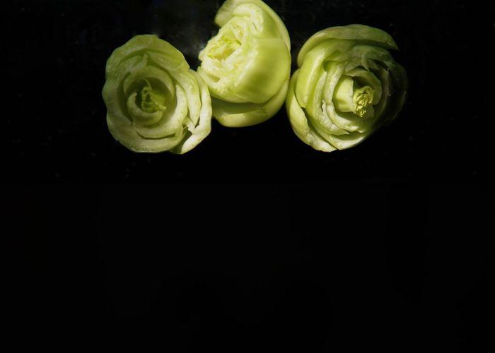 vegetables that look like flowers Studio Shot Yellow Black Background No People Close-up Indoors  Vegeart ArtWork Vegetables Of EyeEm Market (null) EyeEm Team EyeEm EyeEmBestPics Eyeemphoto Eyeemmarket EyeEm Best Shots EyeEm Gallery Editorial  (null)Commercial Healthy Eating