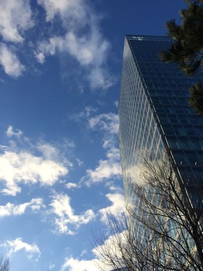 Hello World Low Angle View High Building Buildings Architecture Architecture_collection EyeEm Blue Sky Sky Cloud Clouds Sky And Clouds Clouds And Sky Tree Trees Zuidas Buildings & Sky Sunny Sunny Day