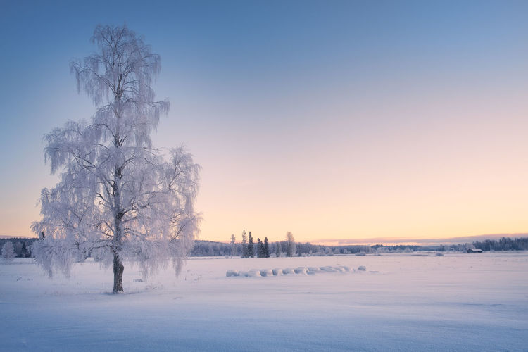 Scenic View Of Snow Covered Landscape Against Clear Sky