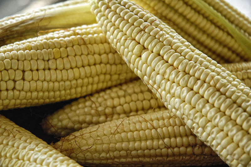 Backgrounds Cereal Plant Close-up Corn Corn On The Cob Food Food And Drink Freshness Healthy Eating Mexican Food No People Vegetable Visual Feast