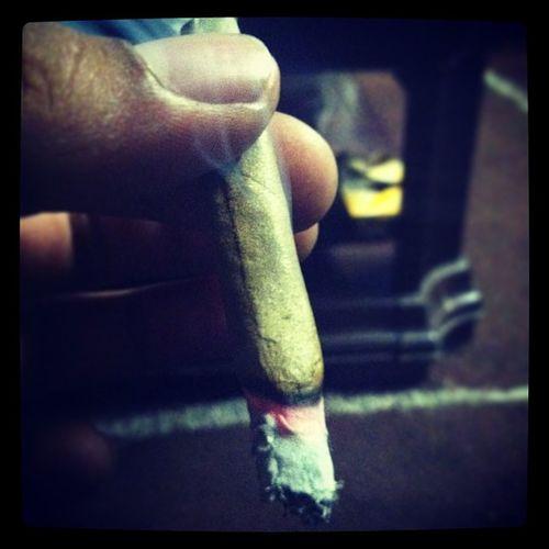 Dank All Day IStayHigh Istayblown highlifemarijuanaganja
