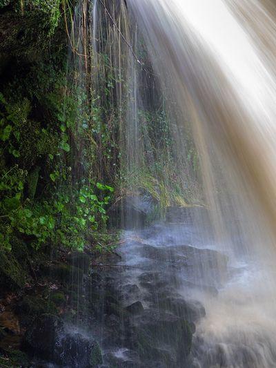 Waterfall Waterfall Falkirk Westquarter Scotland Falls Water Flowing Flowing Water Beneath