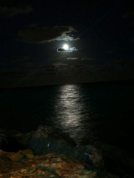Moonlight Night Sea Moon Beach No People Water Nature