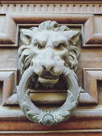 Knocker Antique Door Architecture Knock Knock! Who's There?! Door Knocker