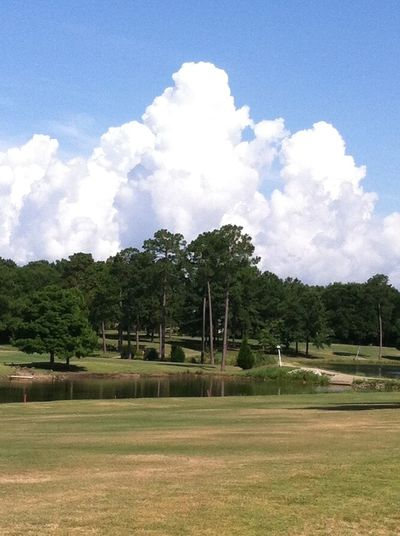 Showcase: February Golf Course Fairway Water Pond Green Sky Water Trees