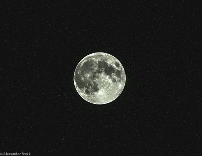 Man In The Moon Moonlight Full Moon Nightphotography Good Night Night Moon Moon Shots
