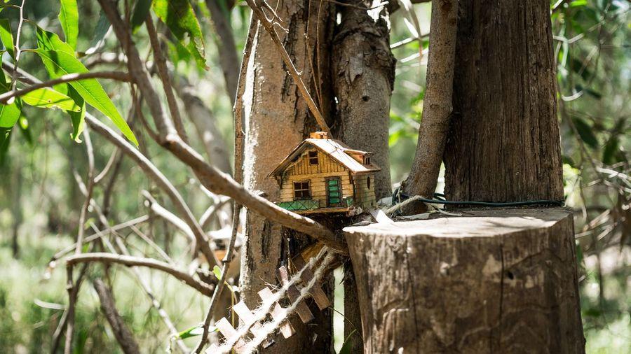 House On A Tree Fairy World Fairy Garden
