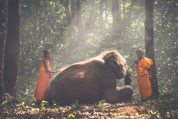 Smiling monks standing by elephant in forest