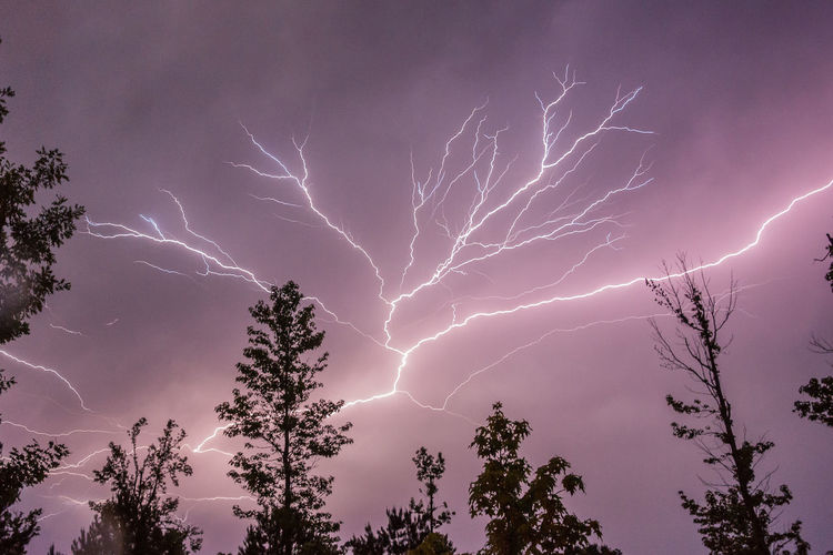 Beauty In Nature Cloud - Sky Dark Glowing Growth Idyllic Illuminated Lightning Lightning Bolts Lightning Flash In Sky Lightning Storm Lightningphotography Low Angle View Majestic Nature Night No People Outdoors Power In Nature Scenics Sky Tranquil Scene Tranquility Tree Weather The Photojournalist - 2018 EyeEm Awards