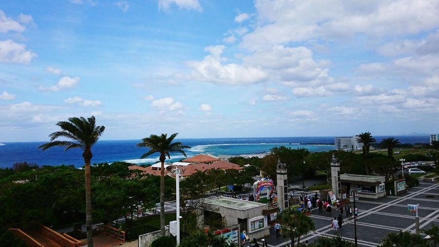 【Okinawa,Japan】C